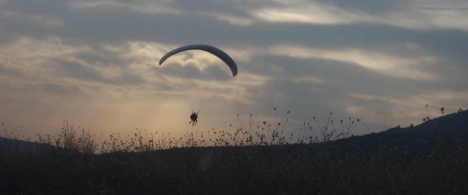 Picture of a paragliding