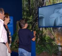 Fotografia de la sala de terra de dinosaures de l'Epicentre